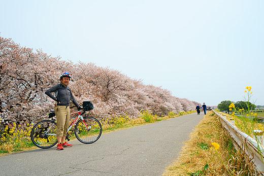 アクションカム『FDR-X3000R』で撮る『春の荒川サイクリングロード お花見サイクリング』