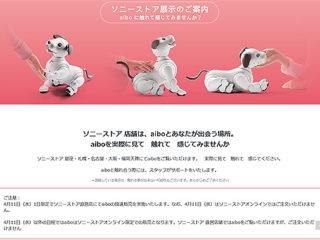 4月11日(水)1日限定!ソニーストアにてaibo持ち帰り抽選販売を実施!