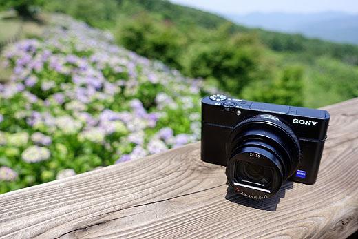 【レビュー】『DSC-RX100M6』で撮る「美の山のあじさいハイキング」