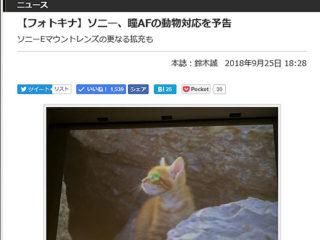 """【ニュース】フォトキナにてソニー""""α""""が動物の瞳AF対応を予告"""