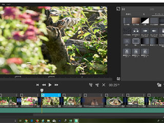 4K動画自動編集ソフト『FASTCUT』でシマリス撮影会編集