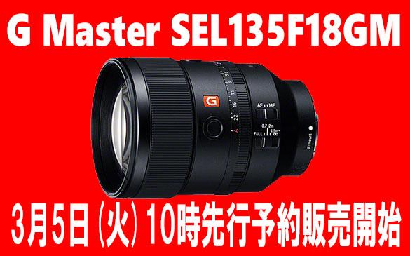 SEL135F18GM sale