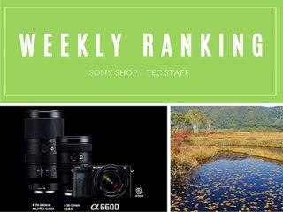 【ランキング】注目度UP!8/24~8/30までの一週間で人気を集めた記事TOP7