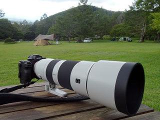 超望遠ズームレンズ『SEL200600G』で撮る野辺山の野鳥