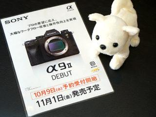 """デジタル一眼カメラ""""α9Ⅱ""""がソニーストアにて予約販売開始! 残価設定クレジットなら月額13,700円で購入可能!"""