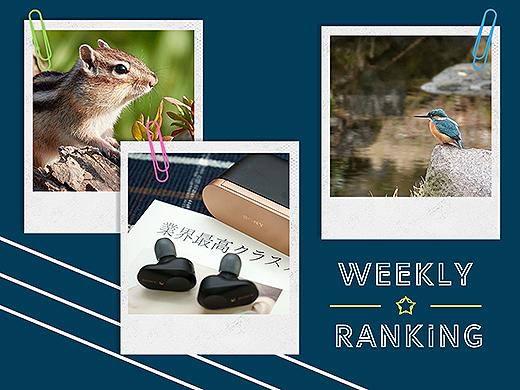 【ランキング】注目度UP!1/11~1/17までの一週間で人気を集めた記事TOP7