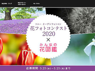 【フォトコンテスト】ソニーマーケティング主催『花フォトコンテスト2020』の作品募集は5月25日まで