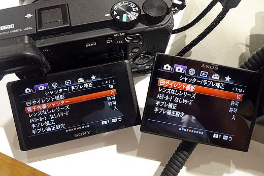 左がα6600 右がα7Cです