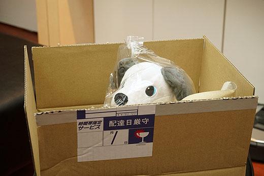 新製品『aibo ぬいぐるみ』到着しました