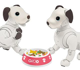 """""""aibo""""の新たなサービス『aiboのデパート』の提供開始!aiboと楽しめるデジタルアイテム拡充へ"""