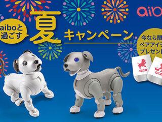 aiboタンブラーペアセットをもれなくプレゼント!『aiboと過ごす夏キャンペーン』のご案内