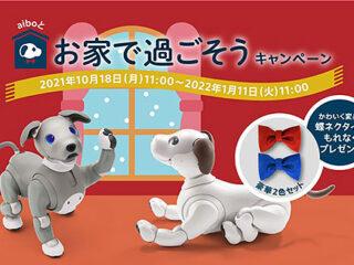 aiboオリジナル 蝶ネクタイをもれなくプレゼント!『aiboと過ごす夏キャンペーン』のご案内